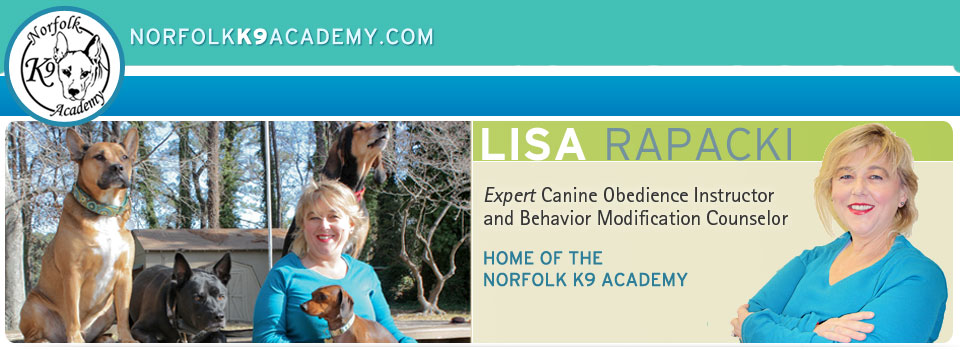 Norfolk K9 Academy